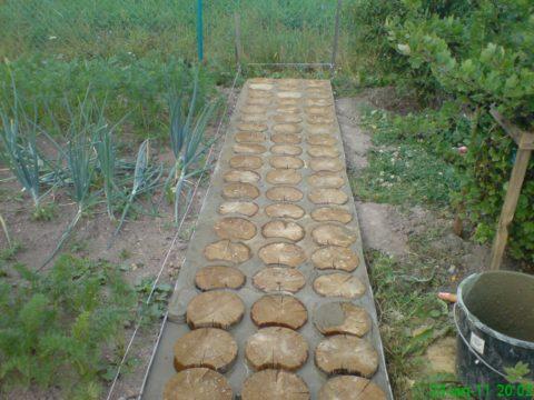 Древесные кругляки, уложенные в бетон