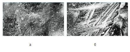 На изображении: а – структура обычного цементного камня; б – камень, после добавления нанотрубок