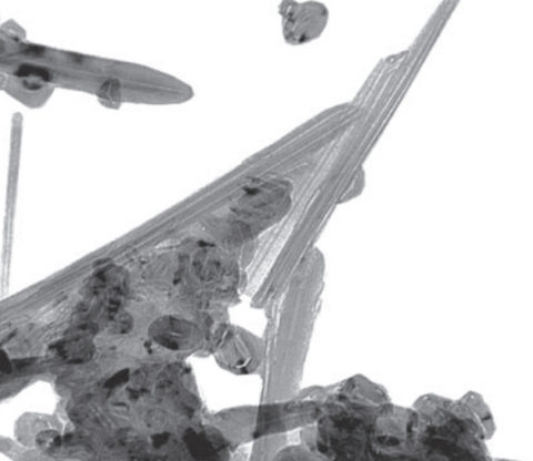 Микрофотография явления агломерации астраленов на углеродных нанотрубках
