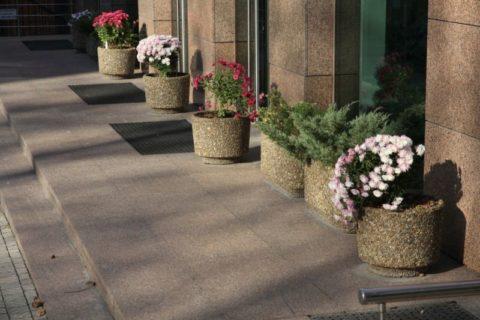 Вазоны для цветов из мытого бетона на открытом крыльце общественного здания