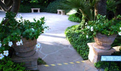 Горшки для цветов своими руками из бетона, способные преобразить участок и придать ему индивидуальность