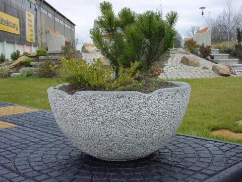 Клумбы из бетона не боятся морозов, поэтому в них можно высаживать небольшие деревья или кустарники