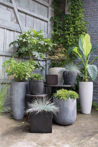 Разнообразие форм бетонных ваз