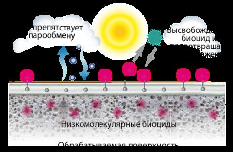 Схема действия биоцидной добавки