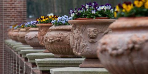 Бетонные цветочницы украсят любой участок