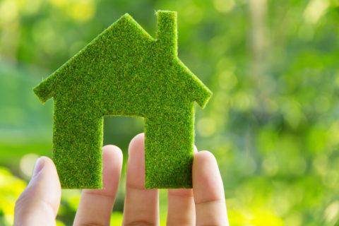 Насколько экологичен материал