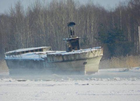 Останки железобетонного судна на реке Луга