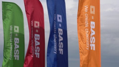 BASF – бренд с мировым именем