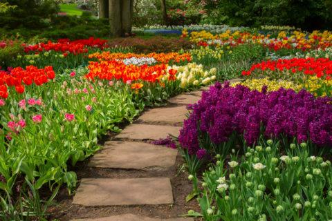 Бетонная дорожка в саду