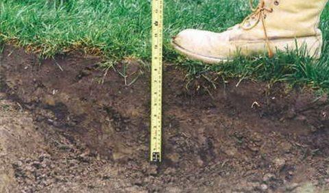 Глубина выемки почвы в среднем составляет не более 30 см