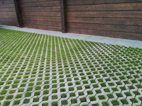 Решетка позволяет сохранить зеленый покров там, где при других условиях был бы асфальт