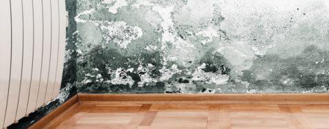 Назапущенных участках при обработке вполне возможно придется восстанавливать части стен