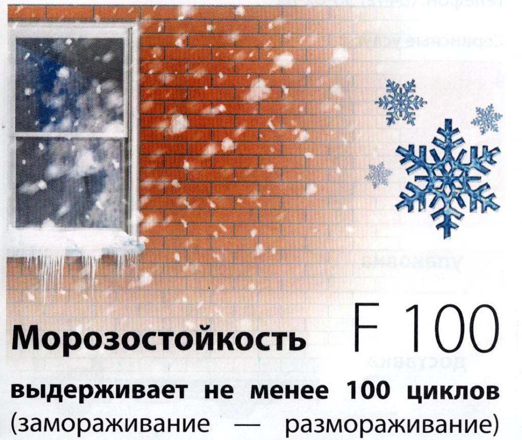 морозостойкость f100 что это