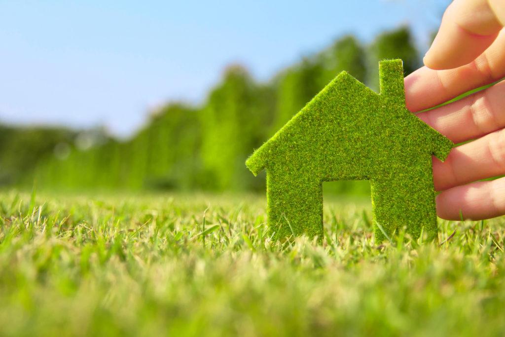 Картинка экологичного домашних