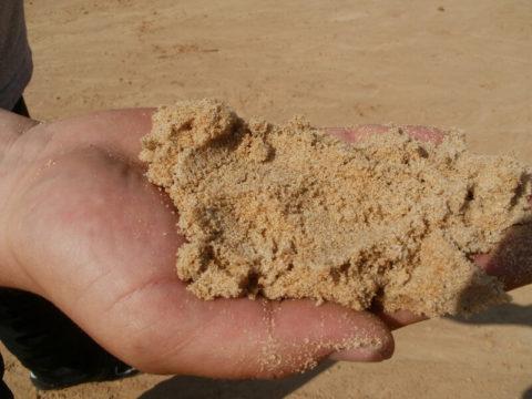 Один объем сухого ивлажного песка имеет разный вес