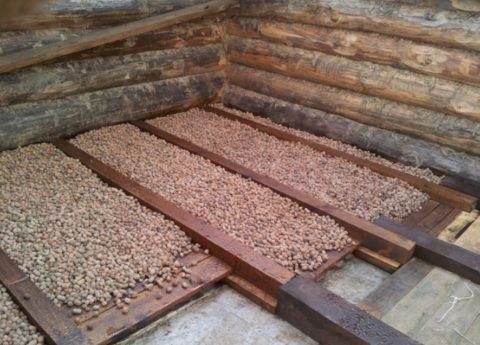Керамзитовая засыпка на бетонное основание