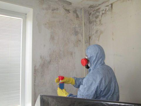 Удаление плесени со стены следует производить в средствах индивидуальной защиты